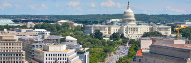 Photograph of Washington, DC and the Capitol building in summer