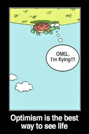 turtle flipped on his back exclaiming that he's flying
