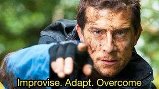 Celebrity adventurer Bear Grylls funny meme