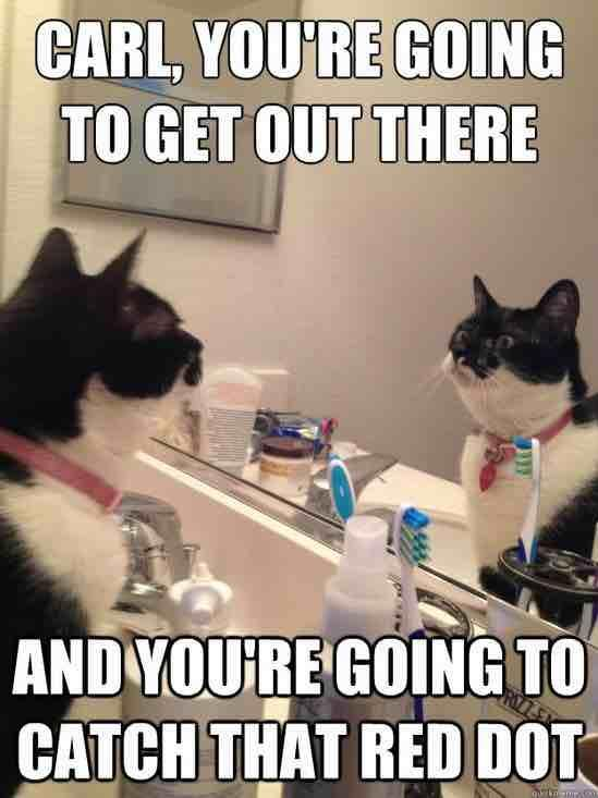 meme: Carl, you're going to get out there and you're going to catch that red dot.