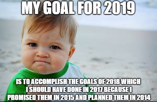 meme: My goal for 2019 is to accomplish the goals of 2018 which I should have done in 2017 because I promised them in 2015 and planned them in 2014.