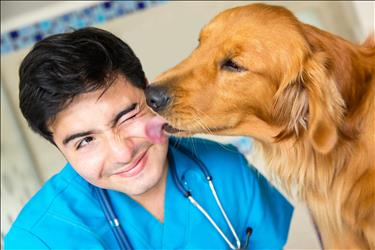 young veterinarian with dog