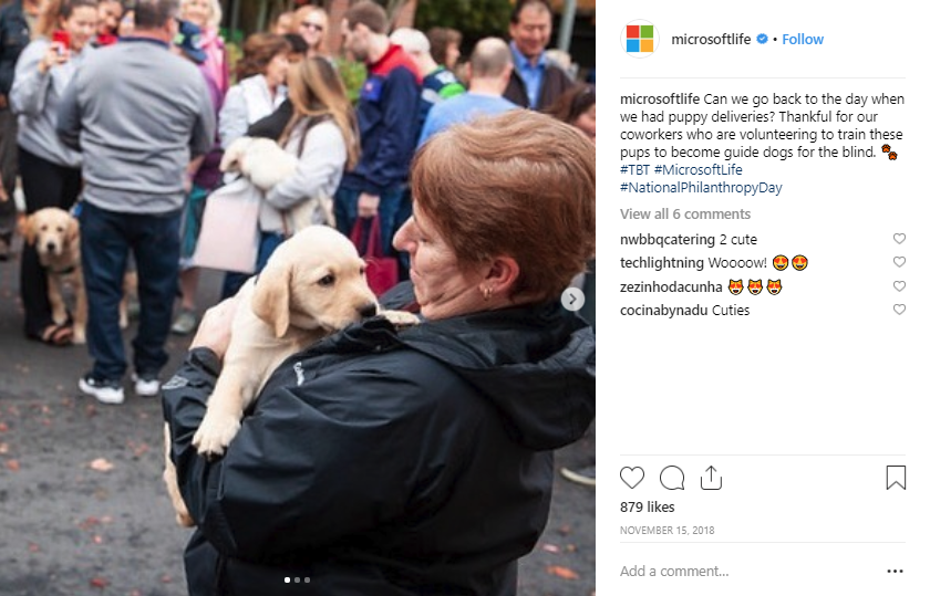 screen shot of a @microsoftlife post on instagram