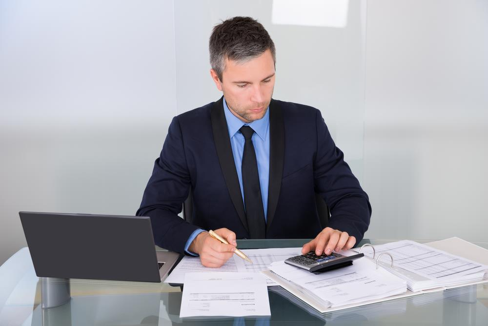 auditor reviewing a company's financial statements