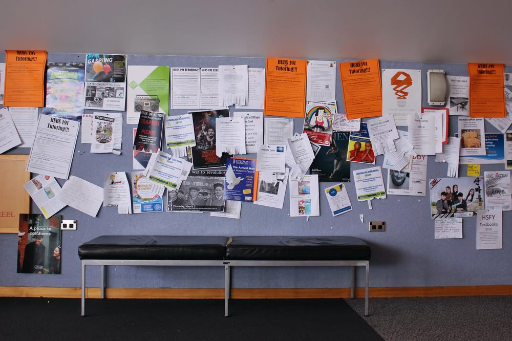 Bulletin board filled with fliers in public building
