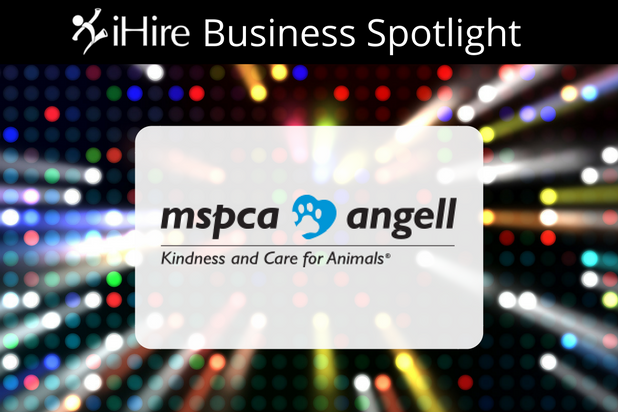 ihire business spotlight mspca-angell