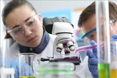 two analytical chemists examining samples under a microscope