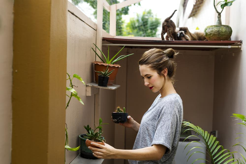 job seeker taking a break to tend to her indoor garden