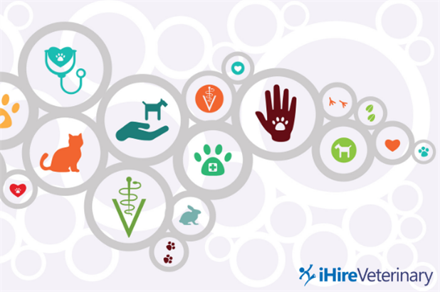 Graphic with colorful icons related to animal care and the veterinary industry