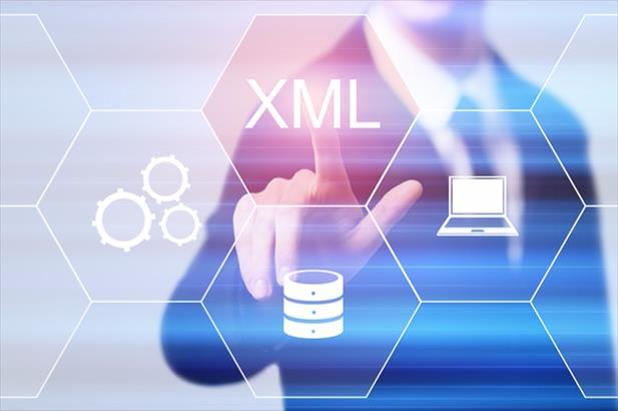 Abstract picture of professional pointing to XML button